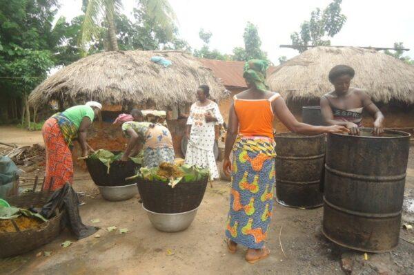 Projet Economie locale et accès à l'emploi pour les jeunes et femmes : mission d'identification des besoins des groupements de femmes de la commune de Dogbo